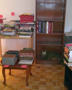 books bookcase and a cat