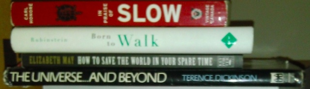 Book spine poetry attempt